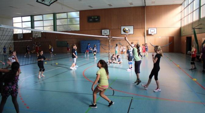 Das zweite U2 Volleyballturnier (2015)