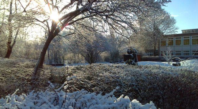 Winter am JBG